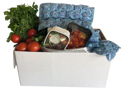 Dry Ice Packs for shipping fruit and vegetables